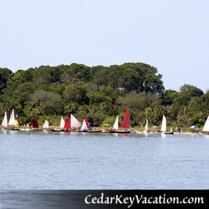 Cedar Key Vacation Activities inclue Small Boat Meet