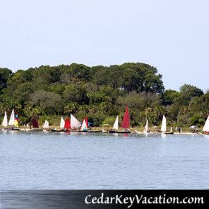 Cedar Key Vacation Activities inclue Small Boat Meet