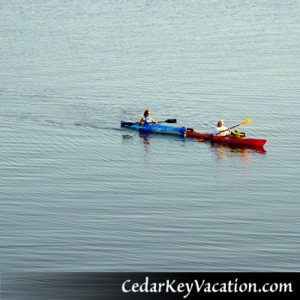 Cedar Key Vacation Kayak